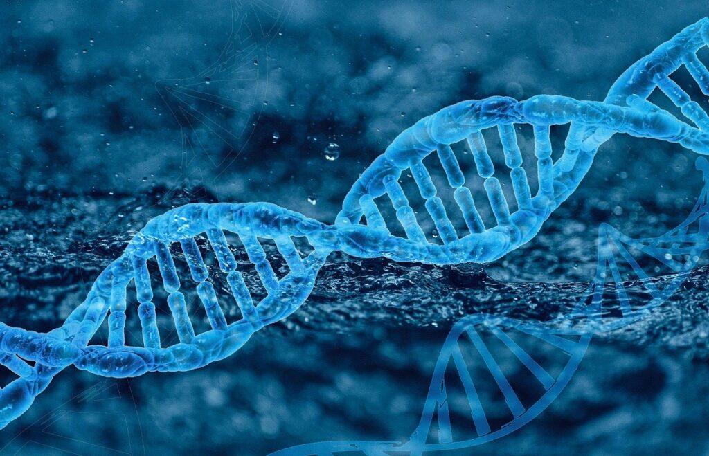 dna, genetics, molecule
